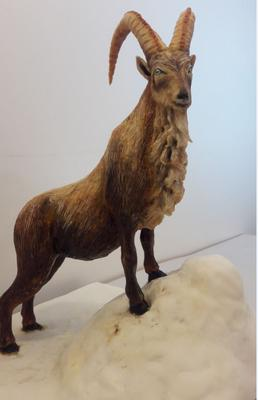 National Animal of Paksitan, Markhoor by Anna Dillon from Scotland