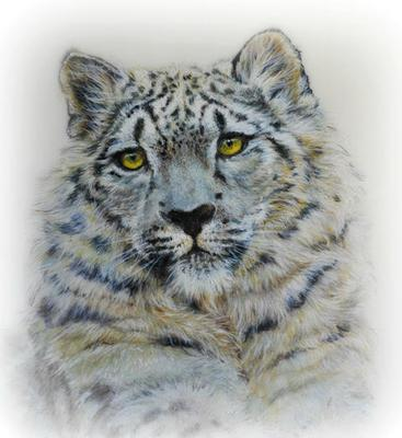 Snow Leopard by Sandra Smiley