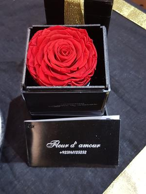 Rose in a box by Fleur D'Amourpk