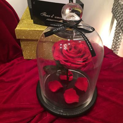 Rose in a Jar by Fleur D'Amourpk